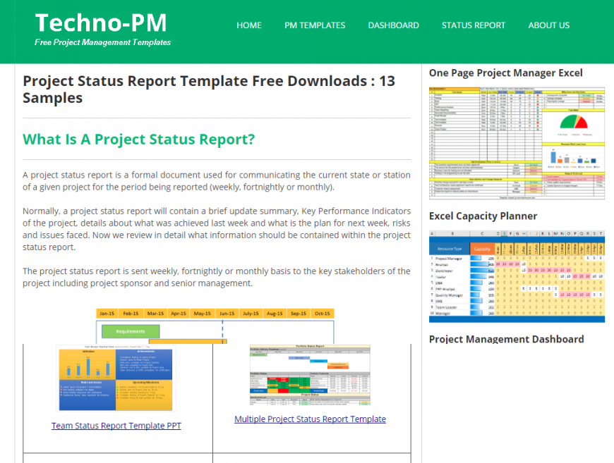 Project Status Report Templates screenshot